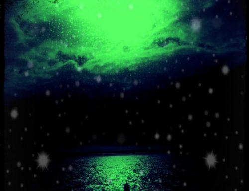 Sommernachtstraum by Elvis & Spencer
